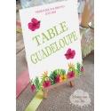 """Marque table de mariage Chevalet """" Les Iles / Tropique """" personnalisé"""