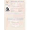 Faire part de Mariage - Passeport Mariage INTERIEUR